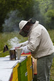 Beekeeper Stock Photography