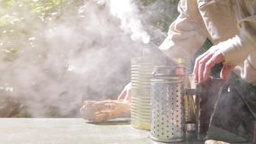 Beekeeper is working with bees and beehives on the apiary stock footage
