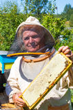 Beekeeper working in his apiary Royalty Free Stock Photography