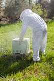 Beekeeper working in his apiary Royalty Free Stock Images