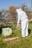 Beekeeper working in his apiary Royalty Free Stock Photo