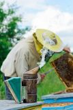 The beekeeper works on an apiary. Apiary. Stock Image