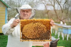 The beekeeper works on a beehive near the hives. Spring work on the apiary. The beekeeper works on a beehive near the hives. Spring work on the apiary Stock Photos