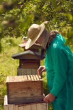 Beekeeperen drar en honungskaka Arkivfoton