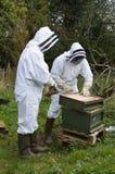 Beekeepers Royaltyfri Bild