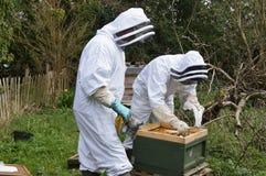 Beekeepers Arkivfoto