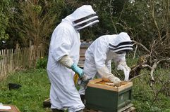 Beekeepers Stock Photo