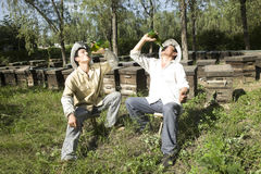 Beekeepers drinking beer Royalty Free Stock Images
