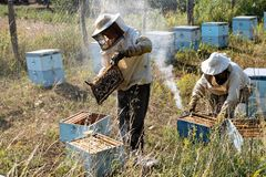 Beekeepers in Greece. Two beekeepers, dressed in special protective clothes, examine their beehives for honey on July 21, 2017 at the area of Mount Olympus in royalty free stock photography