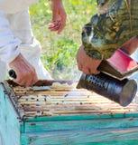 Beekeepers på arbete Royaltyfri Foto