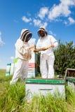 Beekeepers som arbetar på bikupan Arkivfoto