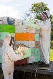 Beekeepers Unloading Honeycomb Crates From Truck Stock Image