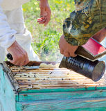 Beekeepers at work Royalty Free Stock Photo