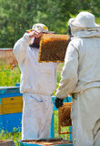 Beekeepers at work Stock Photo
