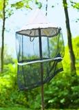 Beekeeping. A protective symbol of beekeeping Royalty Free Stock Image