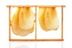 beekeeping Stockfotos