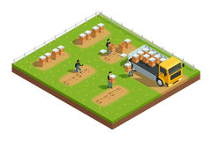 Beekeeping Apiary Isometric Composition Royalty Free Stock Photos