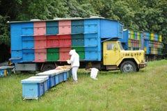 Beekeeping - Beehives Stock Images