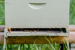 Beekeeping box close up. A white bee keeping box with honeycomb and bees wax peeking out stock photography