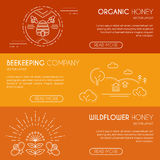 Beekeeping company or organic honey banner design template with thin lile style illustration Stock Images