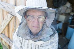 Beekeeper working collect honey. Beekeeping concept. royalty free stock photos