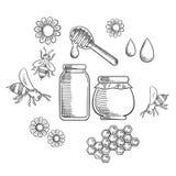 Beekeeping and fresh honey icons Stock Image