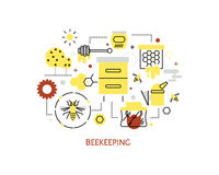 Beekeeping and honey infographics. Royalty Free Stock Image