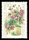 Beekeeping, Honeybee, Apis mellifica. USSR - stamp printed 1989, Memorable multicolor edition offset printing, Topic Fauna - Flowers, Hive and Bees, Series stock photos