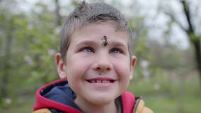 Beekeeping, little brave boy beekeeper smiles with honey bee on his face from hive