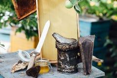 beekeeping Pasika miodu honeycomb obraz royalty free