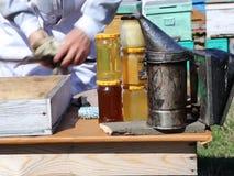 Beekeeping stock footage