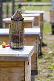 Beekeeping. Smoker for beekeeper to manage bee hive royalty free stock image