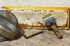 Beekeeping tools. Various beekeeping equipment on the old wooden table stock photo