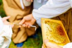 Beekeper donne aux enfants l'occasion de goûter le miel photos libres de droits