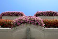 Beeld bloeiende bloemen op de vensterbank thuis Stock Foto's