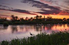 Beeld HDR van lagune bij zonsondergang stock afbeelding