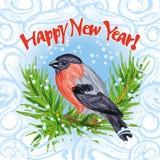 Beeld met goudvinkzitting op spar spurce, snowdrifw & rijpkader - Gelukkig Nieuwjaar Stock Foto's