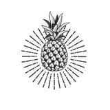 Beeld van ananasfruit royalty-vrije illustratie