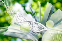 beeld van boek op DNA-kettingsachtergrond Stock Afbeeldingen