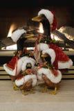 Beeld van de Eenden van Kerstmis Stock Foto's