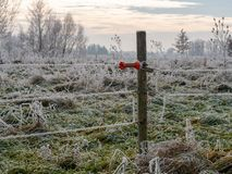 Beeld van de winterlandschap met machtslijnen royalty-vrije stock foto