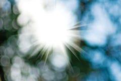Beeld van de zon op een groene achtergrond Royalty-vrije Stock Foto's