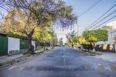 Beeld van een asfaltstraat met stoepen, bomen en elektrische kabels stock foto
