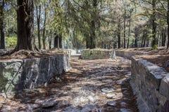Beeld van een kanaal van het steenwater dat door pijnboomnaalden door bomen worden omringd droog en behandeld die is royalty-vrije stock afbeelding
