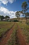 Beeld van een landweg die tot een buitenhuis leidt Royalty-vrije Stock Fotografie