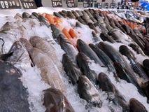 Beeld van een vishandelaartribune met vele verse vissen voor verkoop stock foto's