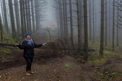 Beeld van een vrouw die bevinden zich vragen en als die op een weg verder te gaan door gevallen bomen in het bos wordt belemmerd royalty-vrije stock fotografie