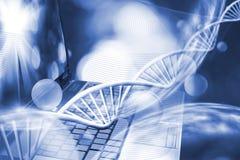 beeld van genetische ketting op toetsenbordachtergrond Royalty-vrije Stock Afbeelding