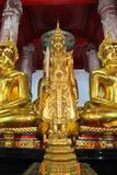 Beeld van Gouden Buddhas in Thailand Royalty-vrije Stock Foto