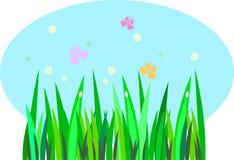 Beeld van gras en vlinders Stock Foto